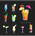 set of alcoholic cocktails isolated fruit cold vector image vector image
