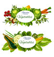 vegetables mushrooms and salad leaves farm food vector image vector image