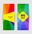 vertical banners with text big sale abstract vector image vector image