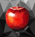 Abstract polygon background with apple vector image