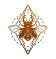 Beetle deer and geometric elements vector image