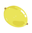 citrus lemon fruit fresh nutrition cartoon vector image
