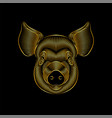 engraving stylized golden pig portrait on black vector image vector image