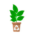 green plant with pot icon flat design vector image vector image