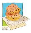 oatmeal raisin cookies vector image