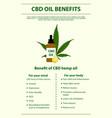 Cbd oil benefits vertical infographic
