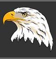 eagle head hand draw