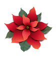 red poinsettia isolated white background vector image vector image