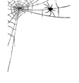 Spider and spiderweb vector image vector image