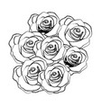 silhouette roses plants icon vector image