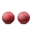 cricket balls set isolated on white background vector image vector image