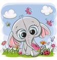 cute cartoon elephant on a meadow vector image