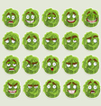Cute cartoon green cabbage smile vector image vector image