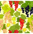 red currant seamless pattern collection of vector image vector image