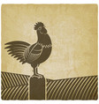 rooster crowed in farm fields vintage background vector image vector image