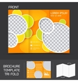 Brochure template tri fold vector image