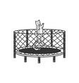 cat jumps on trampoline sketch vector image vector image
