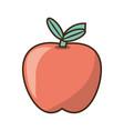 delicious apple fruit vector image vector image