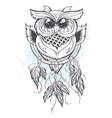 Dreamcatcher with owl feathers vector image
