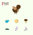 flat icon bio set of bird gull peak and other vector image vector image