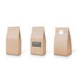 paper foil for food snack sachet bag packaging set vector image