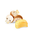 potato chips stack with mushrooms isolated vector image