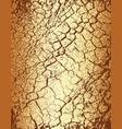tree bark vector image vector image