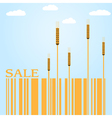 Autumn Sale with wheat and barcode vector image vector image