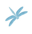 bright blue dragonfly small fast-flying insect vector image vector image