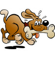 cartoon a happy dog with a big bone vector image vector image