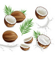 coconuts with splash set collection vector image vector image