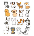 cute dog collection hand drawn style for printing vector image