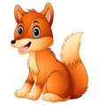 cute fox cartoon vector image