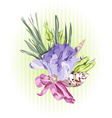 Floral Decor with Eustoma vector image