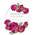 pink roses watercolor card template vector image vector image