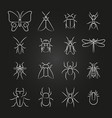 popular insects line icons set vector image
