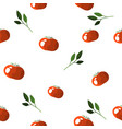 seamless pattern of colorful tomatoes on a white vector image