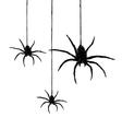 Three spiders vector image vector image
