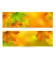 Autumn horizontal banner vector image vector image