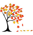 autumn tree cartoon vector image
