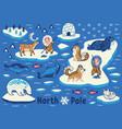 collection of polar animals eskimos and vector image vector image