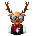 deer hipster dressed and sunglasses vector image vector image