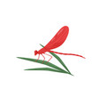 dragonfly sitting on green leaf fast-flying vector image vector image