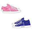 fashionable woman s shoes snickers isolated on vector image vector image
