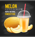 melon smoothie vector image vector image