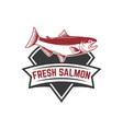 salmon fishing on background vector image vector image