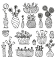 Hand drawn indoor plants in a pots gloxinia vector image