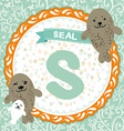 ABC animals S is seal Childrens english alphabet vector image vector image