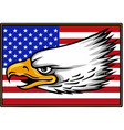 american eagle against usa flag vector image vector image