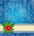 Christmas wallpaper with flower poinsettia vector image vector image